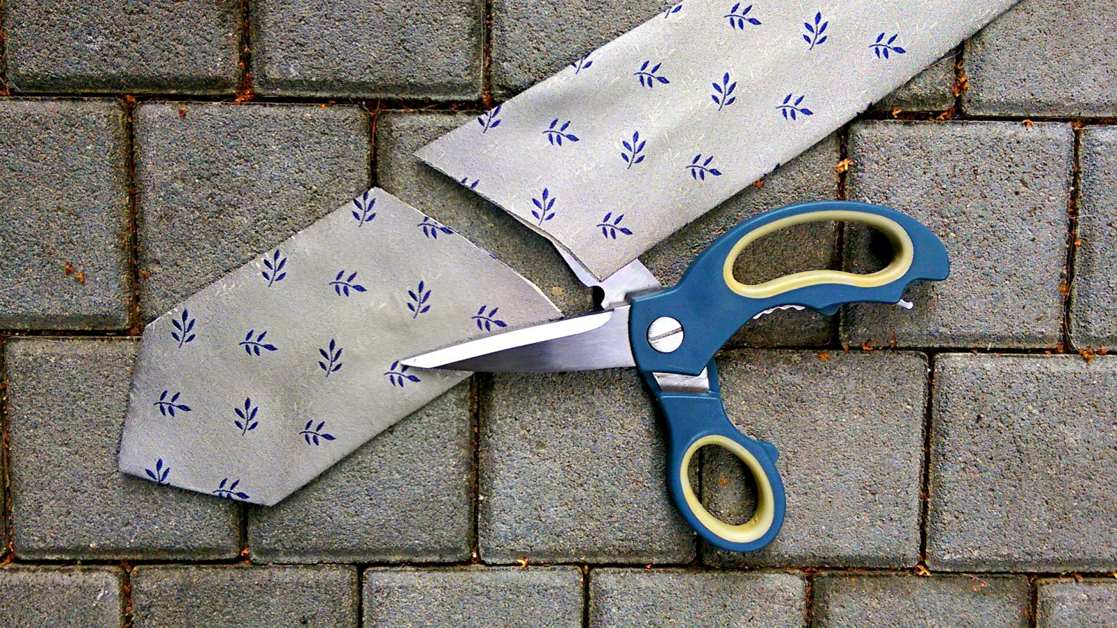 Viva la Revolución (Tie Cut)