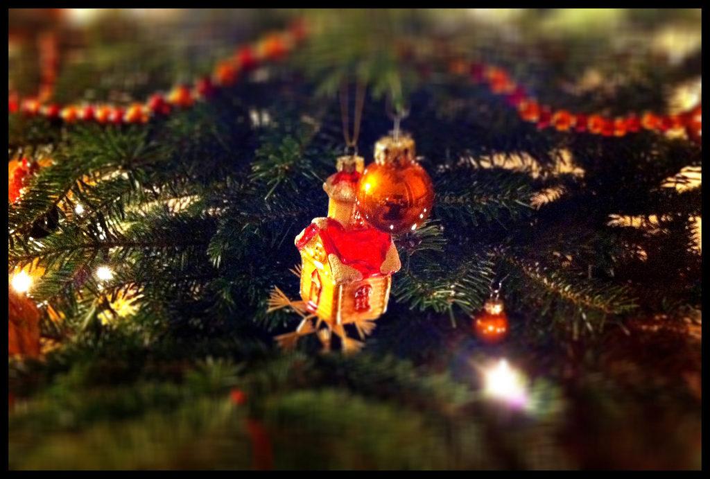 Weihnachtsgeschenke 2011: Deutsche Hirntumorhilfe, ident.africa ...