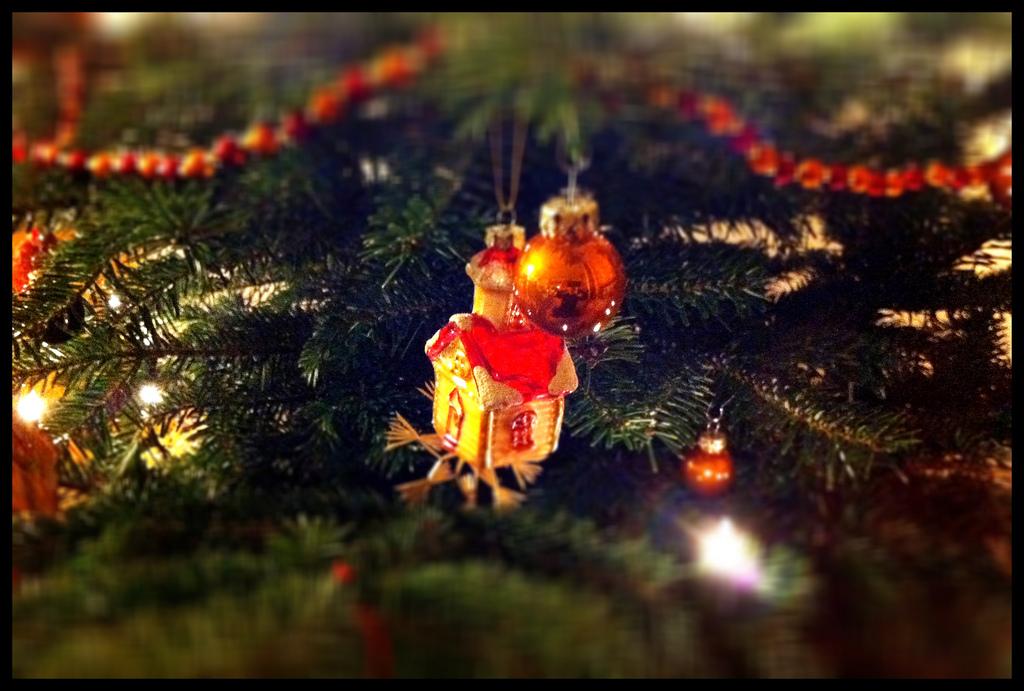 Weihnachtsgeschenke 2011: Deutsche Hirntumorhilfe, ident.africa, Haus St. Martin, Tierhelfer Ingelheim