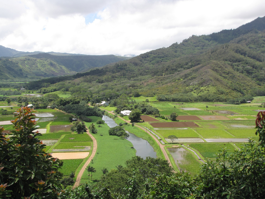 Aloha Friday Foto: Hanalei Valley